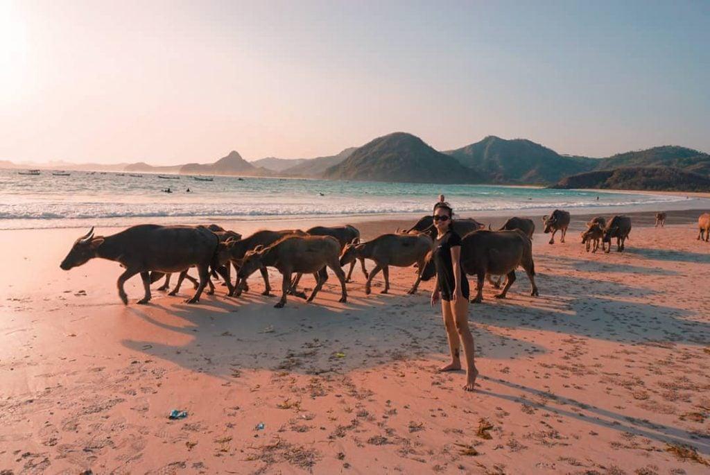 Pantai Selong Blanak, Pantai Eksotis Lombok dengan Nuansa Pedesaan